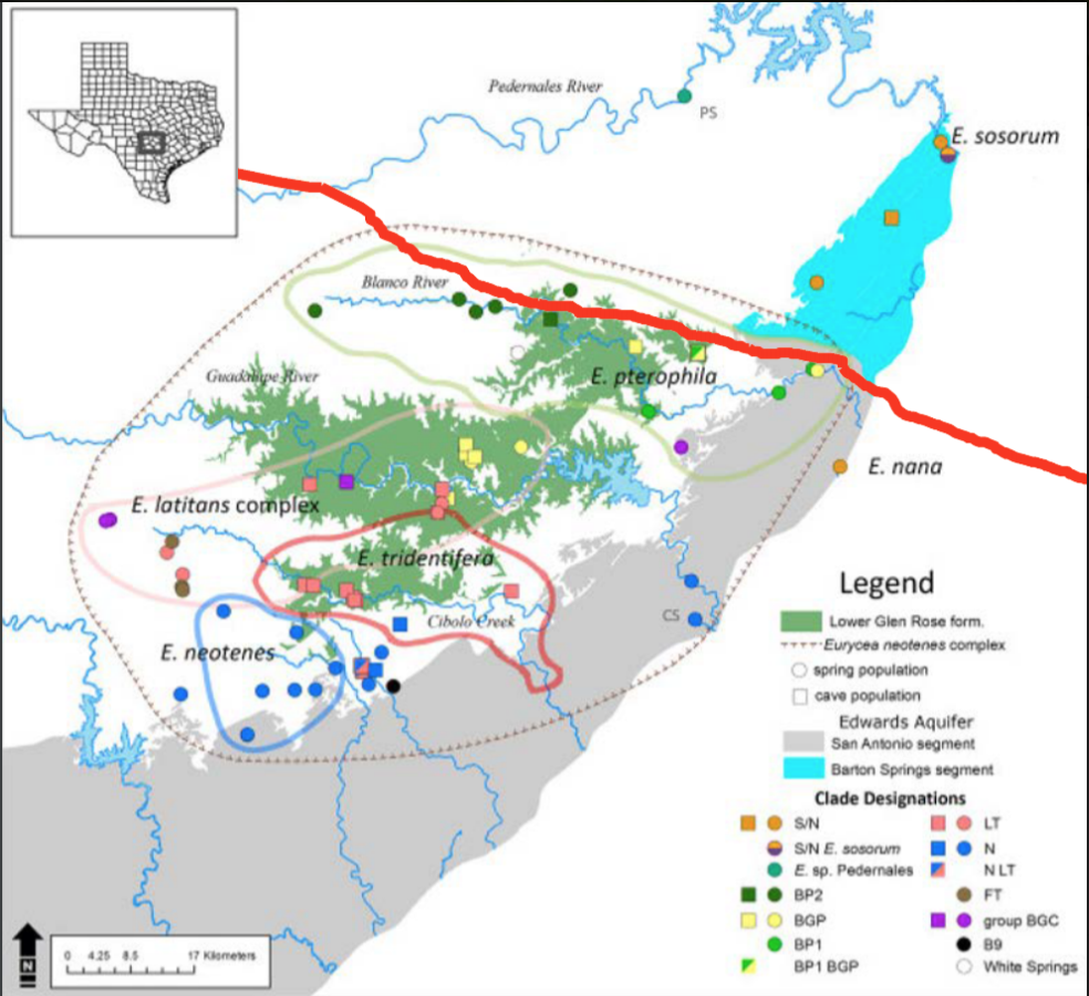 The New Looming Threat to Central Texas Endangered