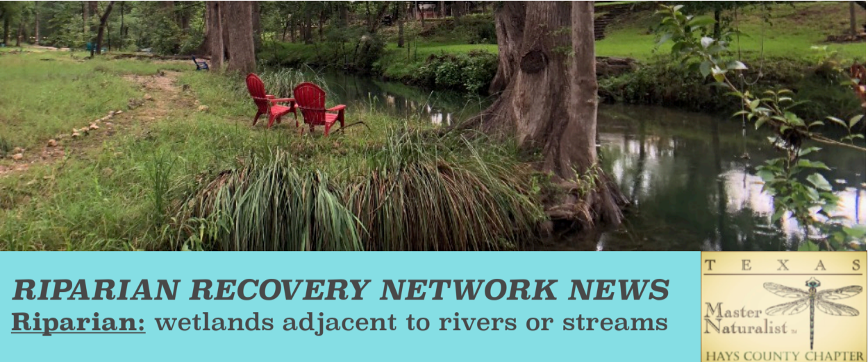 Riparian Recovery Network News